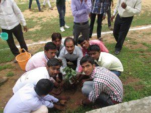 ashwani kumar dubey plantation